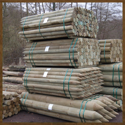 Timber Sourcing - Wooden Logs